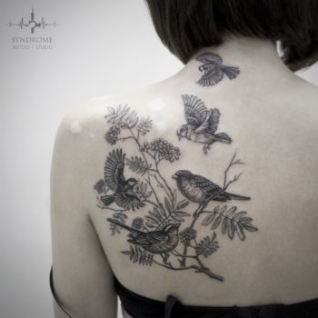 Анна Фрик. Black & Grey. Птицы.